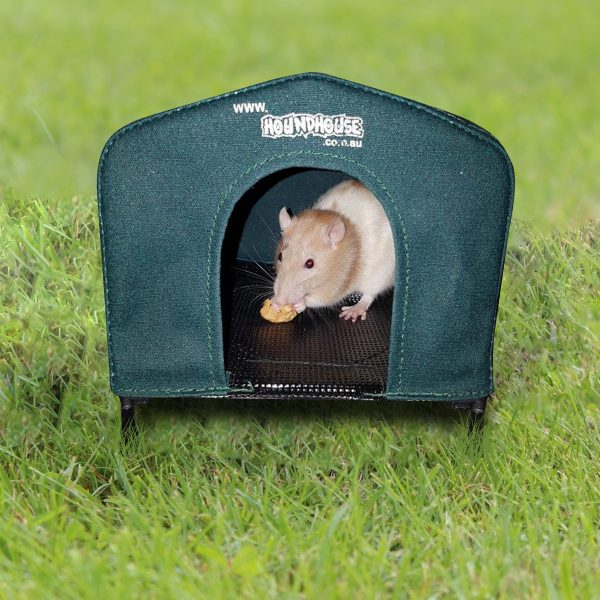 Incredible Rat House 2 For 1 Offer Home Interior And Landscaping Ologienasavecom